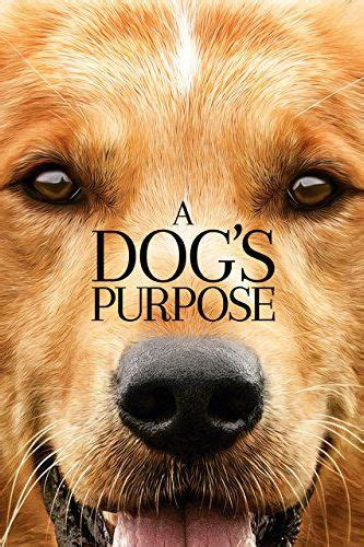 20 Best Dog Movies to Watch - Best Movies About Dogs on